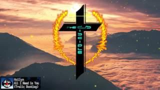 Hollyn - All I Need (Trelic Remix)