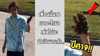 ไปแค้นใครมา ล้วงผึ้งมาทั้งรังแล้วมาปล่อย... #รวมคลิปฮาพากย์ไทย