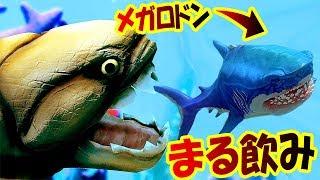 巨大サメの王メガロドンまる飲み!!ついに本物のメガロドンが新実装!!サメの海で弱肉強食の壮絶バトル!!-FeedandGrowFish#83