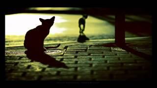 Bonobo - Kiara (Extended Mix)