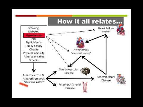 Le miel et la cannelle de lhypertension