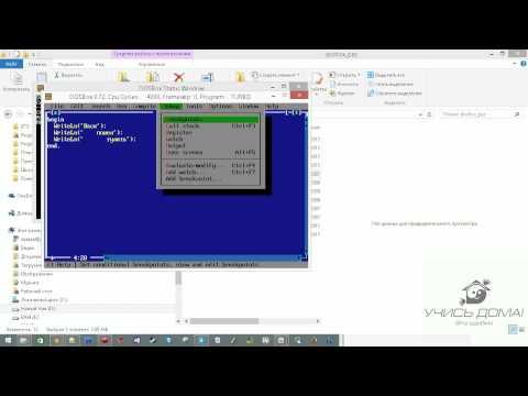 Запуск и работа в Turbo Pascal из DosBox