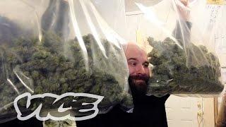 The Cash Crop: Canadian Cannabis