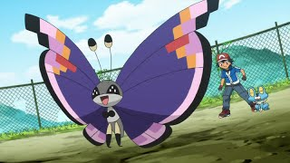 Venonat  - (Pokémon) - Pokemon Theory: Butterfree = Venonat, and Evil Vivillon?!