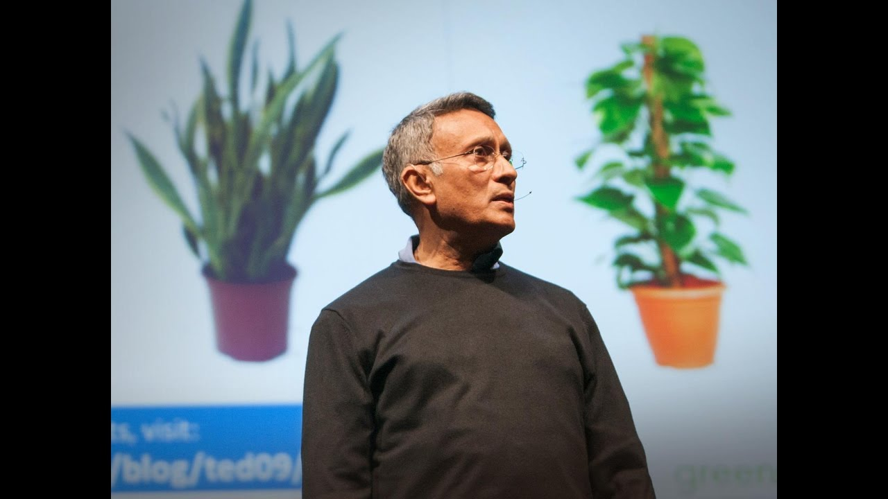 How to grow your own fresh air - Ted Talk