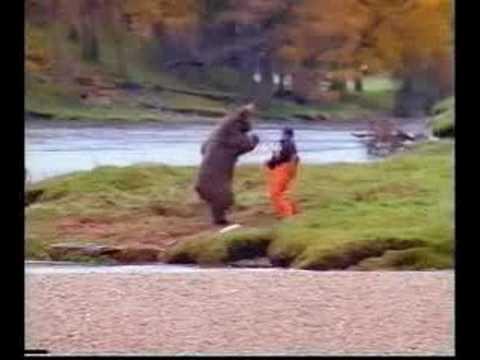Gesichter des Todes - Mann gegen Bär