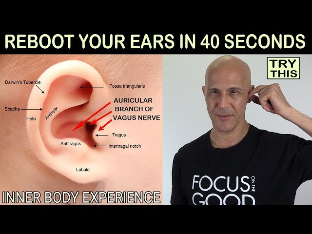 REBOOT YOUR EARS IN 40 SECONDS - (Technique Discovered by Dr Alan Mandell, DC)