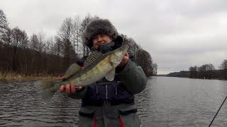 Когда открытие рыболовного сезона на волге