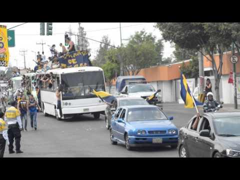 """""""Pumas llegando al azteca"""" Barra: La Rebel • Club: Pumas"""