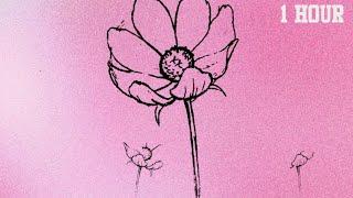 1 HOUR - Marshmello & Halsey - Be Kind | LOOP | LISTEN ON REPEAT