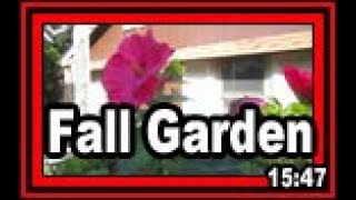 Fall Garden - part 1 of 4 - Wisconsin Garden Video Blog 798