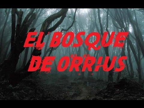 El bosque tenebroso de Orrius y mi experiencia | La sombra del Terror
