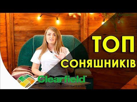 Топ 5 гибридов подсолнечника под Clearfield 2019