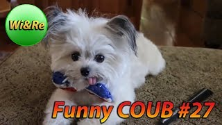 Funny COUB Style #27 ⁄⁄Лучшее в Coub  ПРИКОЛЫ Best Coub