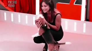 Ани Лорак и собачка