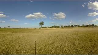 360 Video Botswana Wildlife Film trip  - Photos of Africa VR Safari