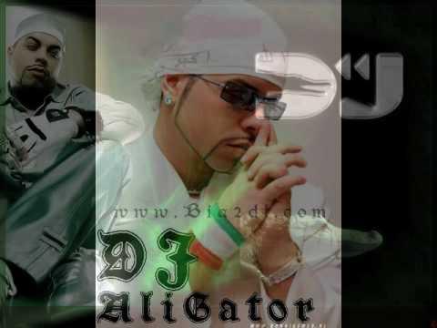 Dj Alligator Project  - You left me longing for you