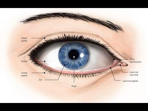 Лазерная коррекция зрения в купчино