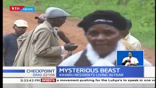 Mysterious creature causing havoc in Kiharu constituency