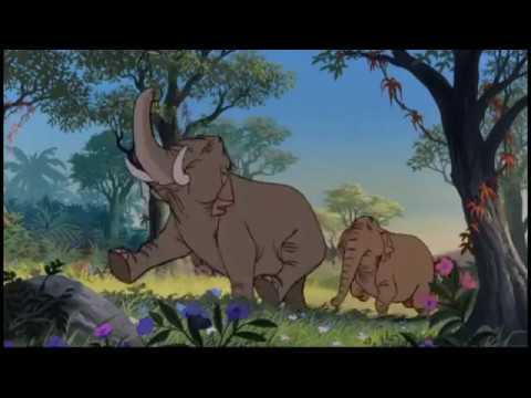 Kniha Džungli - Sloni Výcvik Opakování