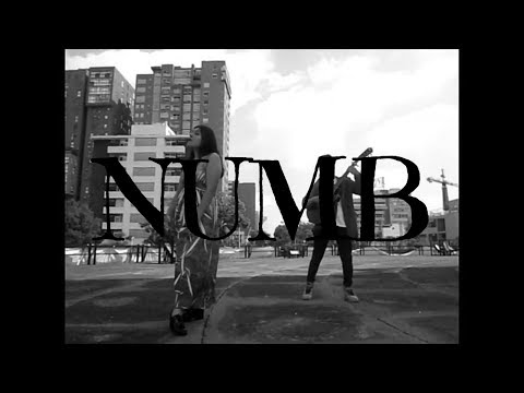 NUMB-Linkin Park-Cover By RAULAX ft.Zihua