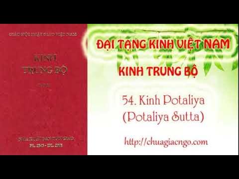 Kinh Trung Bộ - 054. Kinh Potaliya