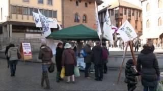 preview picture of video 'LEGA NORD sezione di Melegnano - Campagna Elettorale per Maroni Presidente'