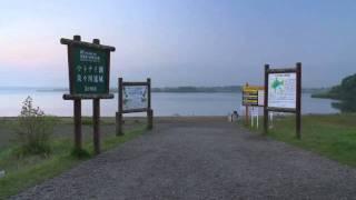 北海道観光映像(ウトナイ湖)
