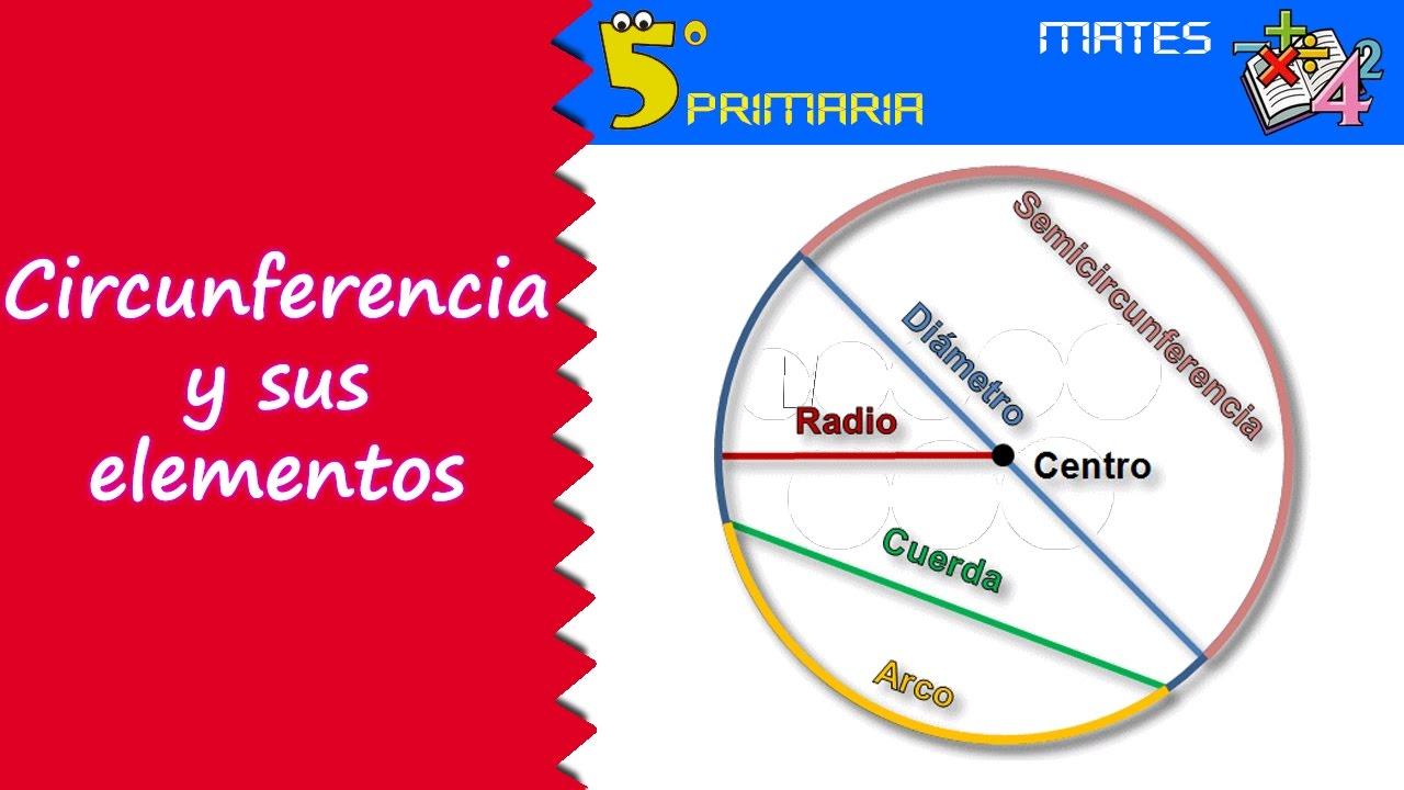 Circunferencia y sus elementos. Mate, 5º Primaria. Tema 12