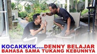 Download Video Kocak.. Denny Belajar Bahasa sama Tukang Kebunnya MP3 3GP MP4