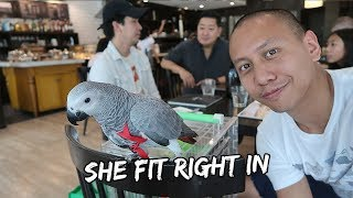 A Day Out in Manila With My Bird | Vlog #309