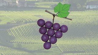 Tuto grappe de raisins avec bouchons en plastique