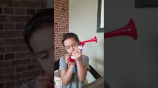 Dollar Tree store Air Horn review