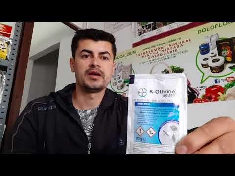 Eliminați medicamentele pentru condilom