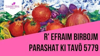Parashá Ki Tavô