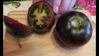 Our Best Heirloom Tomatoes Revealed - Lets Talk Tasty Tomatoes!