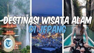 8 Tempat Wisata Alam di Jepang yang Populer di Kalangan Traveler