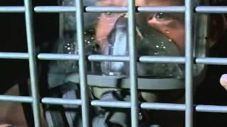 Deep Blue Sea (1999) Video