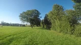 Sleeping field, 3min of zen cinematic fpv footage !