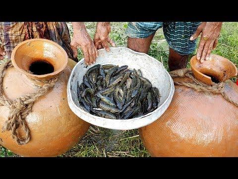 Unusual Fishing   Trapping Huge Country Fish Using Big Pottery Pot   Big Pot Fish Catching
