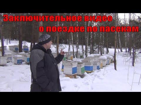 Заключительное видео о поездке по пасекам