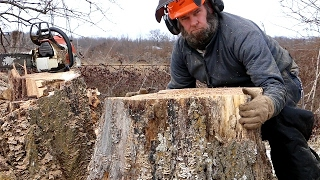 CRAZY STUMP REMOVAL TRICK (funny  Not How To)