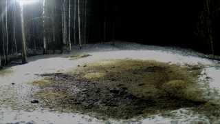 Video toilette (madebythefire - BUDET 2013)