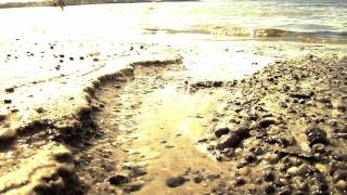 Old Orchard, Maine [Knee Deep by Zac Brown Band ft. Jimmy Buffett]