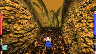 American McGee's Alice - Walkthrough - Part 6 - WONDERLAND WOODS (2011 version)