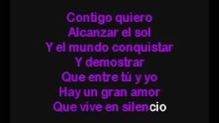 Amor Secreto   Luis Fonsi Karaoke