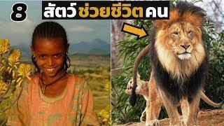 8 เรื่องจริง!! สัตว์ช่วยชีวิตคนให้พ้นจากเหตุการณ์คับขัน