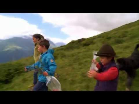 Die Behandlung der Schuppenflechte der Ellbogen vom Pech