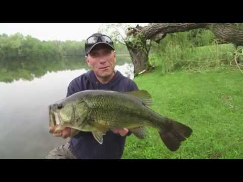 Avoiding Dead Casts for Pond Dwelling Largemouth – Dave Mercer's Facts of Fishing THE SHOW