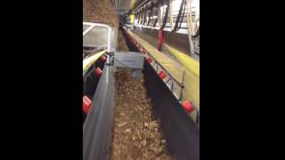 Real Time Moisture Control Biomass: Wood Chips